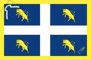 Bandera de Turín