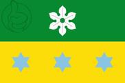 Bandera de Puig Gros