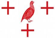 Bandera de Perdigón, El