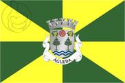Bandera de Águeda