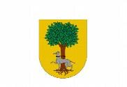 Bandeira do Barrillas