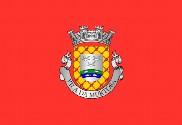 Bandera de Murtosa