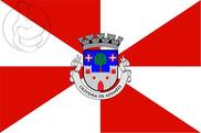 Bandera de Oliveira de Azeméis
