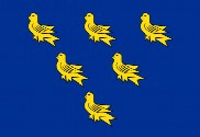 Drapeau de la Sussex