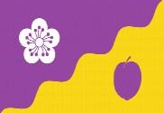 Bandera de Flore