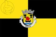 Bandera de Vagos