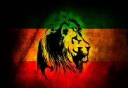 Flag of Rasta custom lion