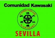 Flag of Community Kawasaki Seville Green