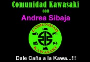 Bandera de Comunidad Kawasaki Personalizada Nombre