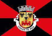 Bandera de Beja