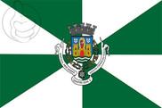 Drapeau de la Oporto