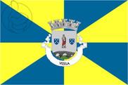 Bandera de Vizela