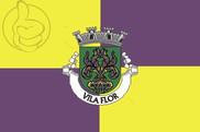 Bandera de Vila Flor