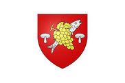 Bandera de Noyers-sur-Cher