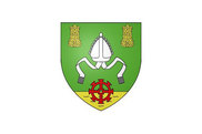 Bandera de Saint-Lubin-en-Vergonnois