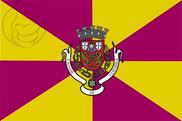 Bandera de Coimbra