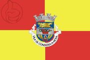Bandera de Condeixa-a-Nova