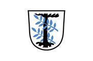 Bandera de Aschheim
