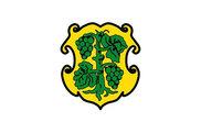 Bandera de Dingolshausen