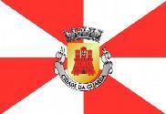 Bandera de Guarda