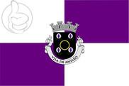 Bandera de Ansião