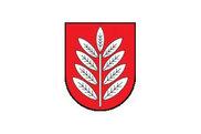 Bandera de Eschede