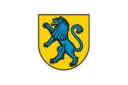Bandera de Salach