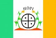 Bandera de Hopi, Arizona