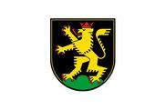 Bandera de Heidelberg