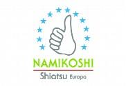 Bandera de Namikoshi Personalizada