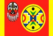 Bandera de Aroostook