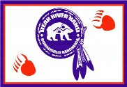 Bandera de Bear River