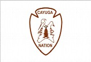 Flag of Cayuga