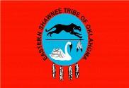 Bandera de Eastern Shawnee