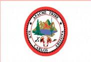 Bandera de San Carlos Apache