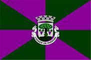 Bandera de Paredes