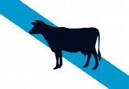 Bandera de Galicia Vaca