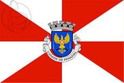 Bandera de Penafiel