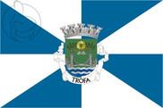 Bandera de Trofa