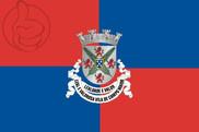 Bandera de Campo Maior