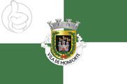 Bandera de Monforte