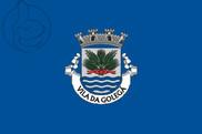 Bandera de Golegã