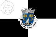 Bandera de Vila Nova da Barquinha