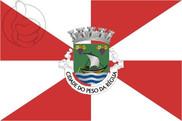 Bandera de Peso da Régua