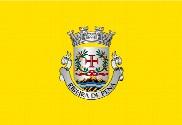 Bandera de Ribeira de Pena