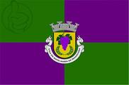 Bandera de Santa Marta de Penaguião