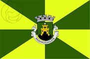 Bandera de Mangualde