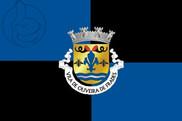 Bandera de Oliveira de Frades