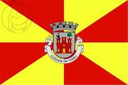 Bandera de Viseu
