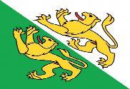 Bandeira do Cantão de Turvóvia